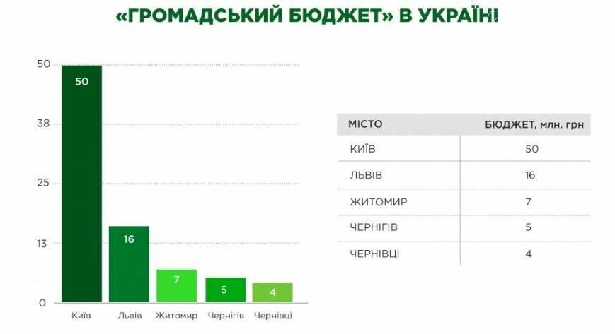В Доброполье появится общественный бюджет участия, фото-1