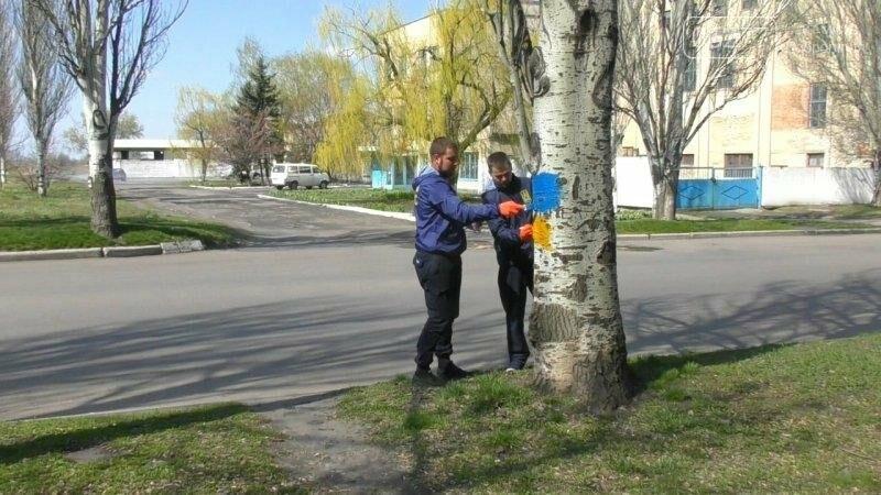 Активисты в Доброполье самостоятельно вернули национальную символику на главные улицы, фото-5