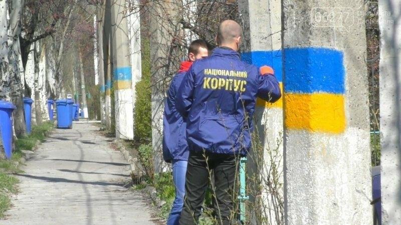 Активисты в Доброполье самостоятельно вернули национальную символику на главные улицы, фото-3
