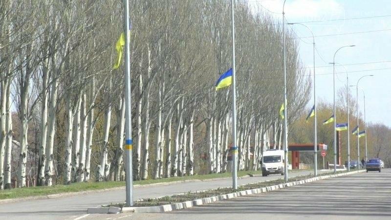 Активисты в Доброполье самостоятельно вернули национальную символику на главные улицы, фото-7