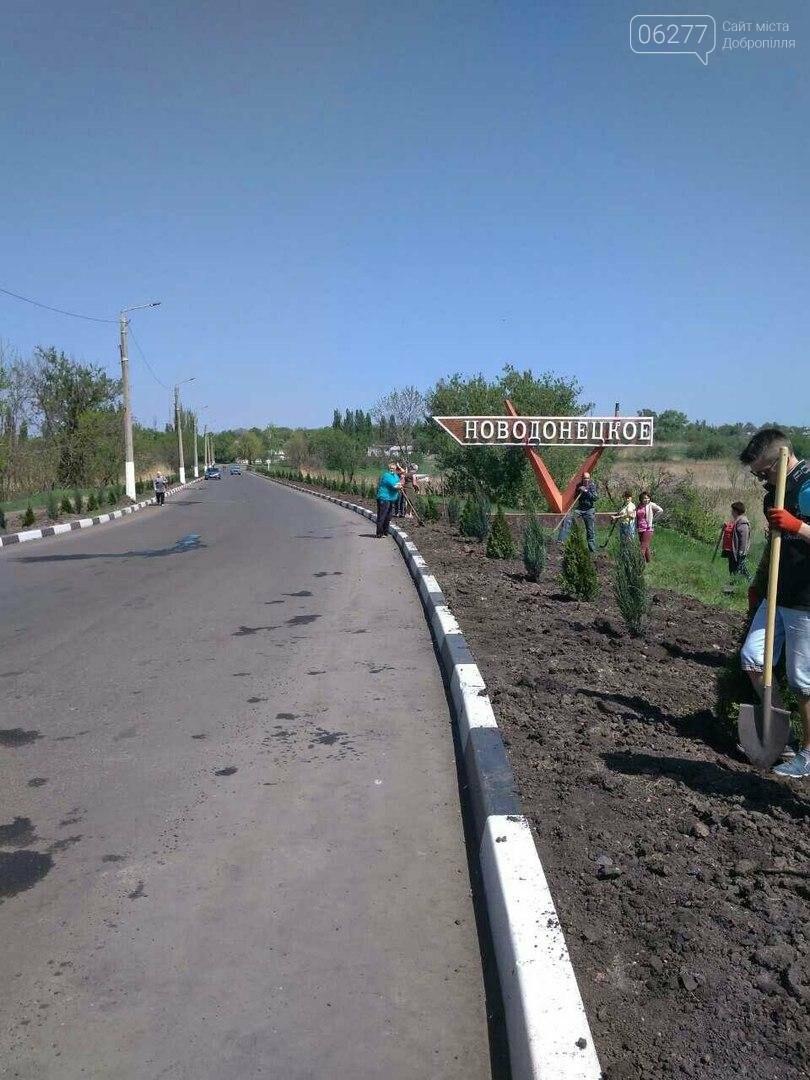 Въезд в Новодонецкое украсили вечнозеленой аллеей, фото-3
