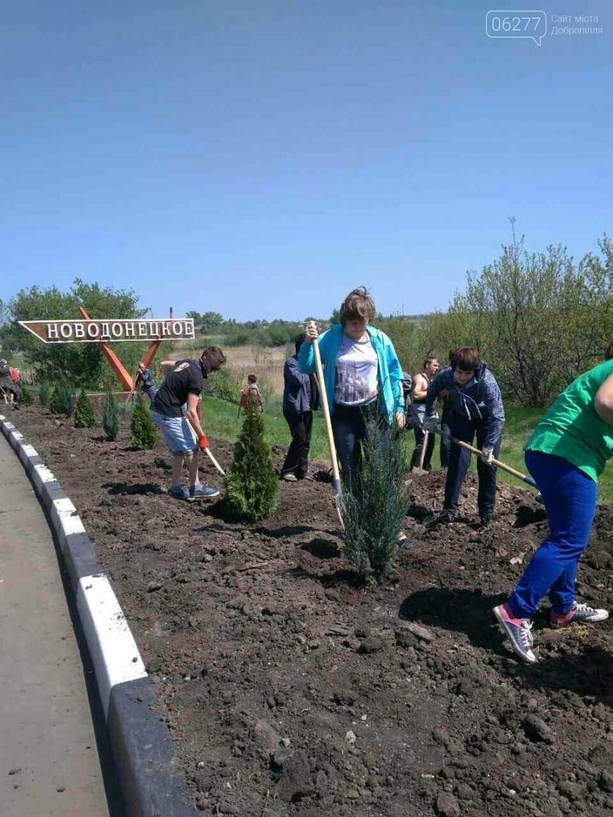Въезд в Новодонецкое украсили вечнозеленой аллеей, фото-4