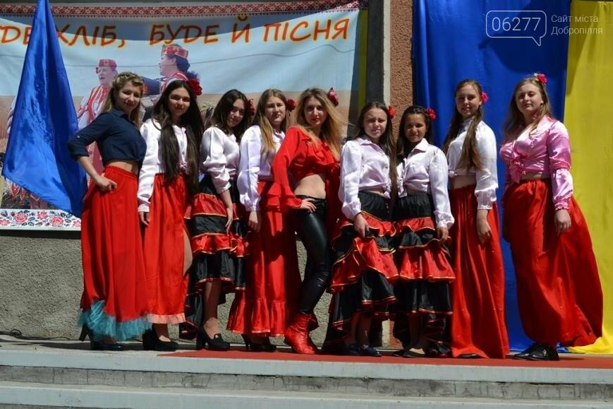 В Добропольском районе отметили День Европы, фото-2