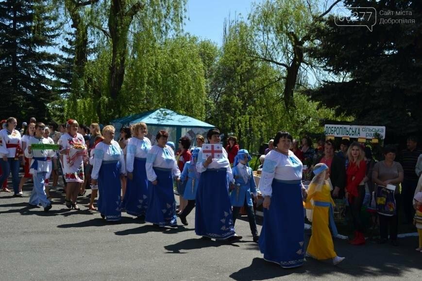 В Добропольском районе отметили День Европы, фото-9