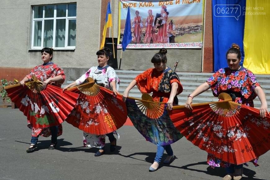 В Добропольском районе отметили День Европы, фото-11