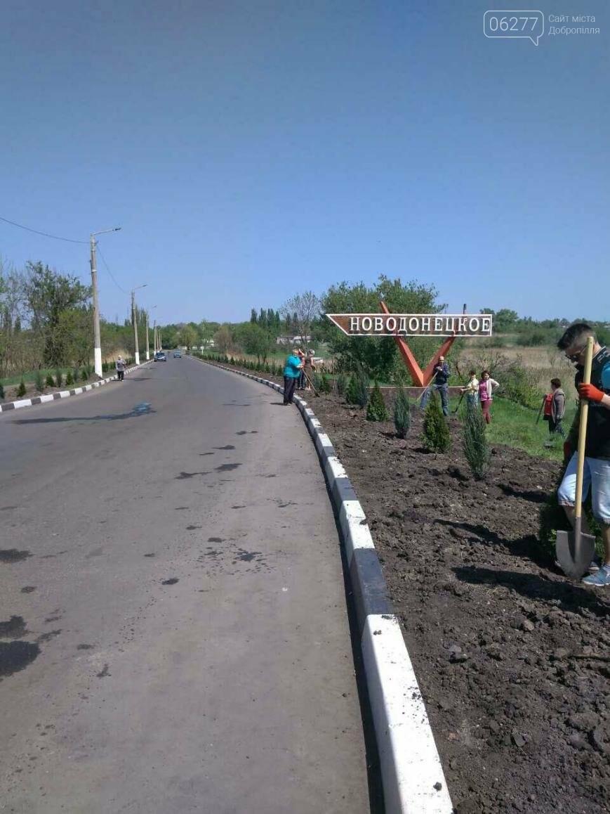 Въезд в Новодонецкое украсили вечнозеленой аллеей, фото-5