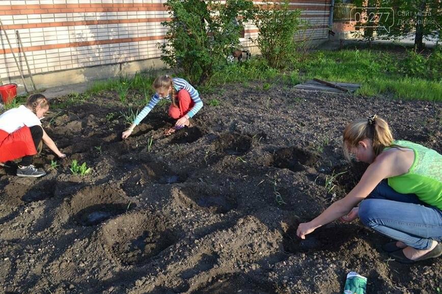 Ученики воскресной школы в Водянском посадили овощи для детского приюта, фото-1