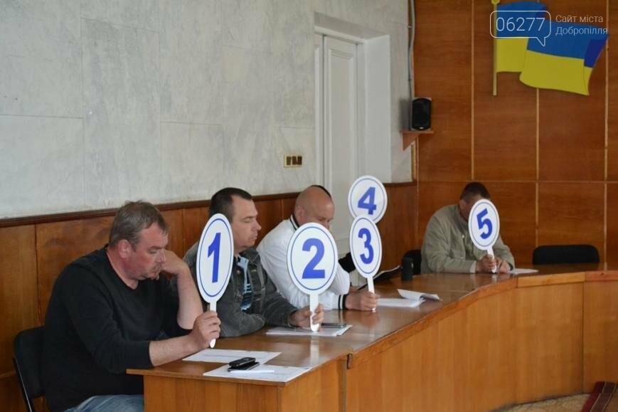 В Добропольском районе на торгах продали право аренды трех участков, фото-2