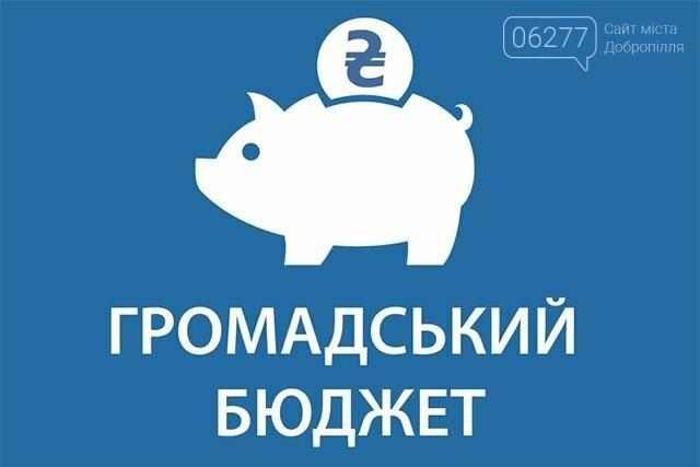Добропольчан научат обращаться с общественным бюджетом, фото-1