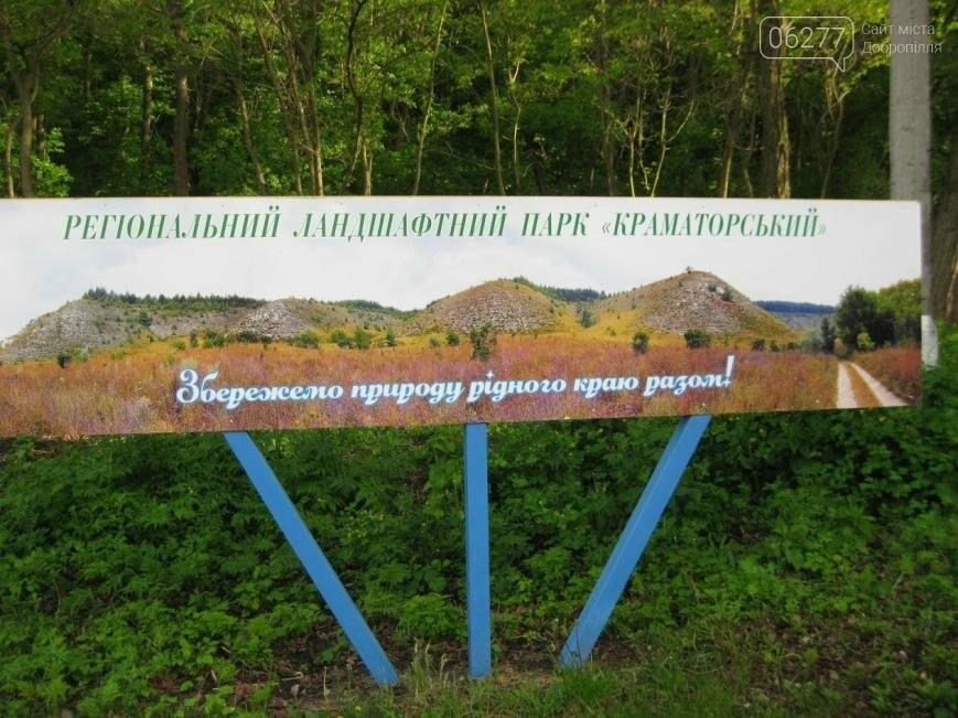 Школьники представили Добропольский район на областном слете экологов и натуралистов, фото-1
