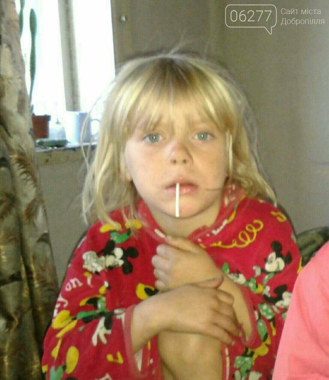 Полиция Донецкой области продолжает поиски 6-летней девочки из Горняка, фото-1