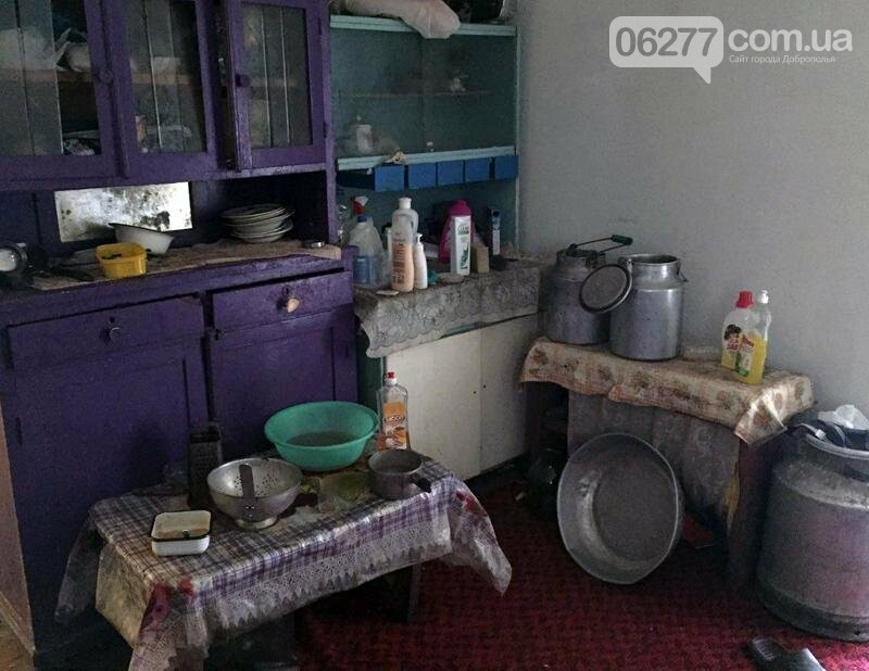 В Доброполье правоохранители привлекли к административной ответственности очередную горе-мать, фото-1