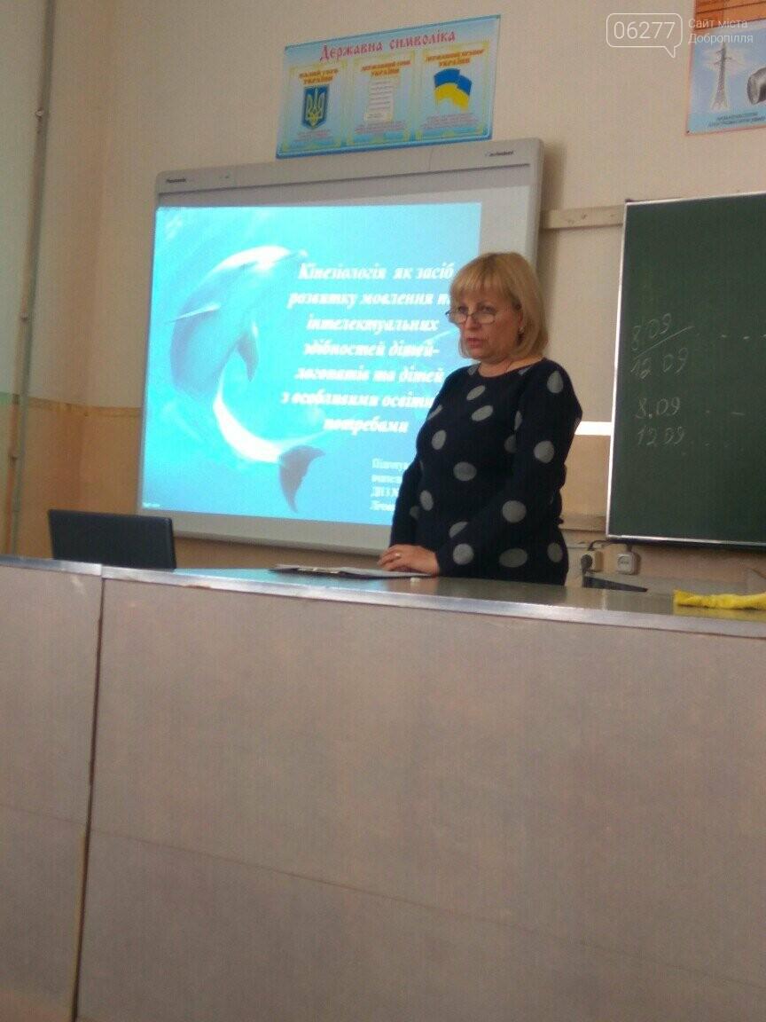 У Добропіллі на базі НВК-ліцею та ЗОШ-інтернату відбулися щорічні Січневі зустрічі педагогічних працівників, фото-1