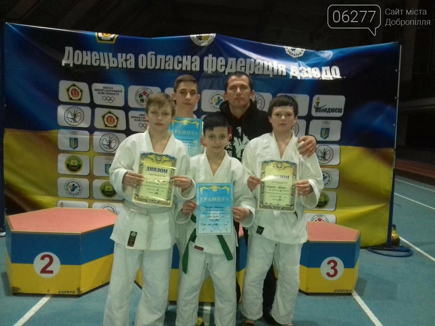 Дзюдоїсти Добропілля здобули 9 медалей, фото-2