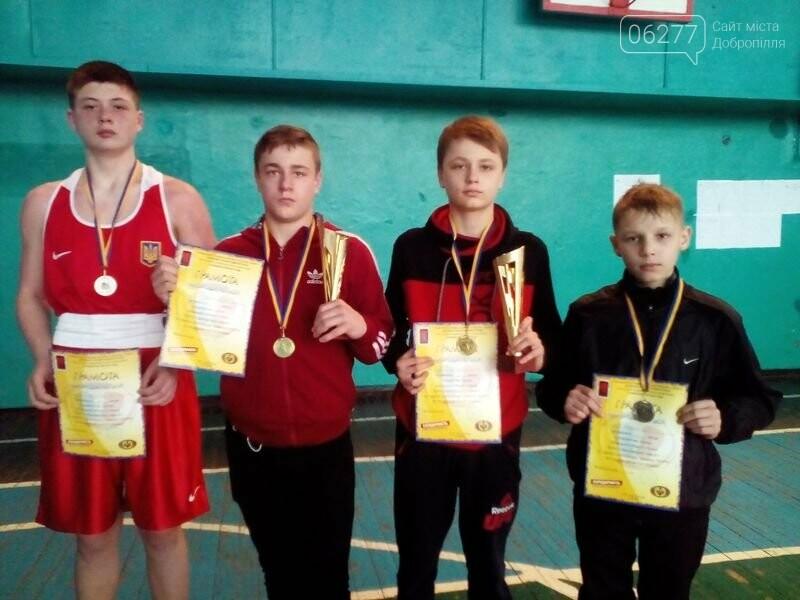 Боксери Добропілля взяли участь у Відкритому обласному турнірі Донецької області з боксу, фото-1