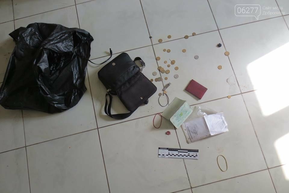 У Добропіллі затримали зловмисника, який серед білого дня намагався пограбувати приватний будинок, фото-1