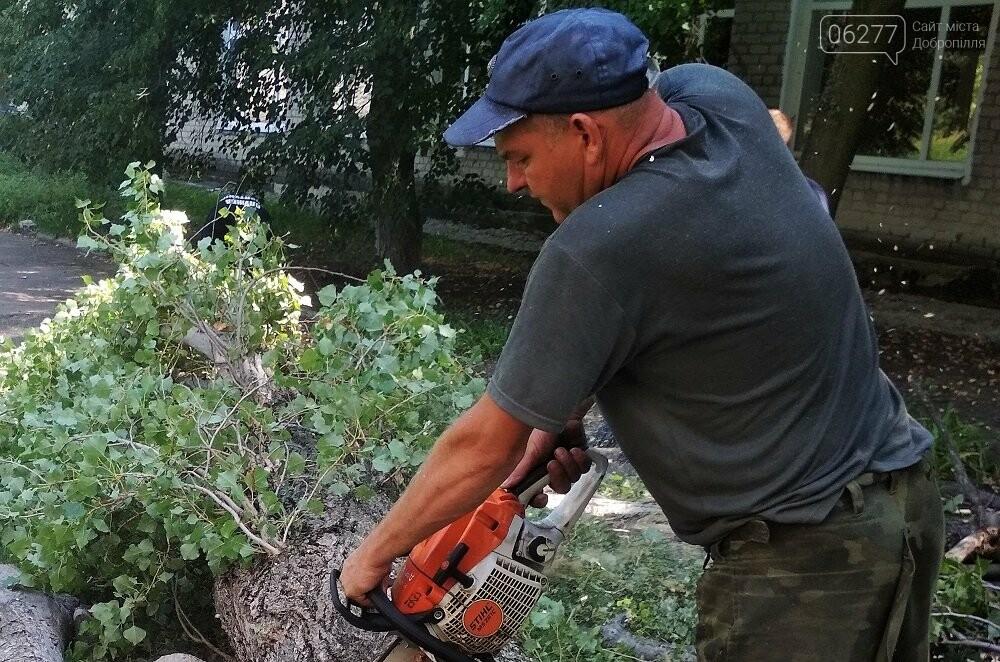 У Добропільському районі рятувальники надали допомогу місцевим органам влади, фото-2