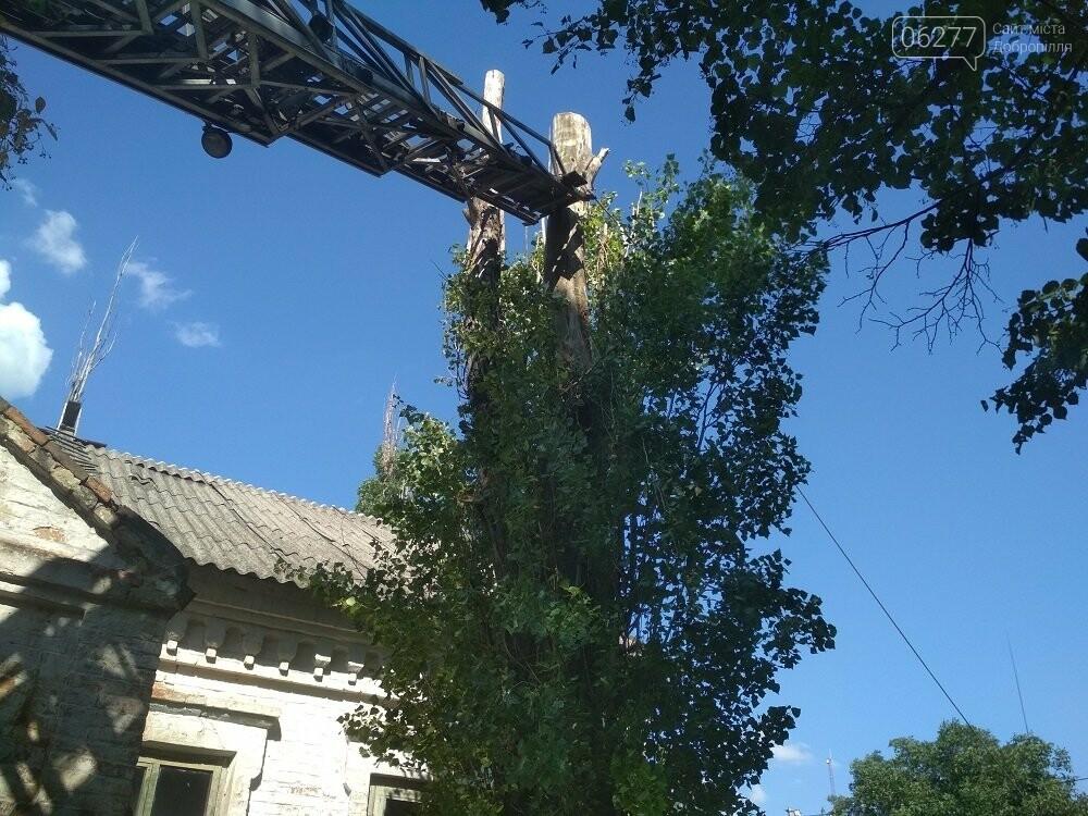 У Добропільському районі рятувальники надали допомогу місцевим органам влади, фото-3
