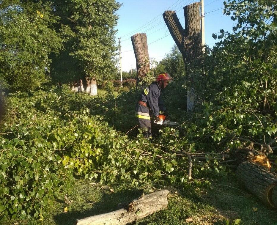 У Добропільському районі рятувальники спиляли 10 аварійних дерев, фото-1