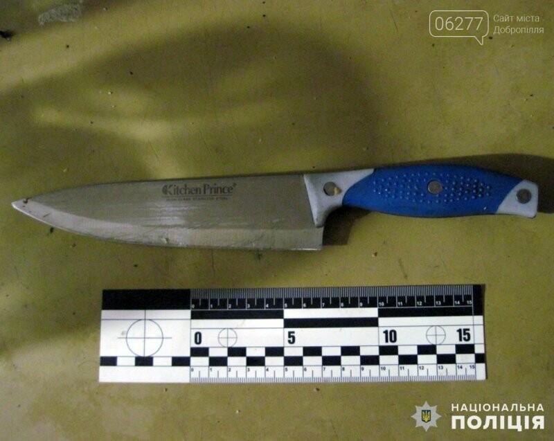 В Доброполье задержана женщина, которая поссорившись со своим сожителем, схватилась за нож, фото-2