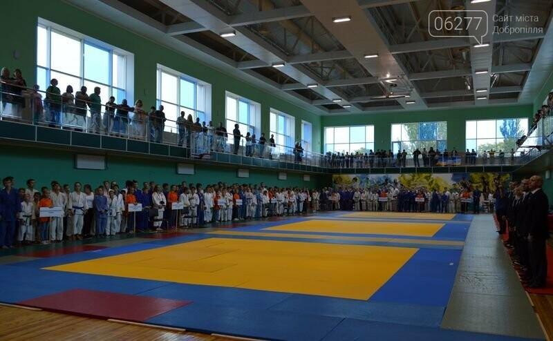 В Добропіллі відбувся Чемпіонат Донецької області з дзюдо, фото-3