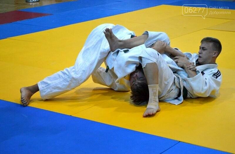 В Добропіллі відбувся Чемпіонат Донецької області з дзюдо, фото-8