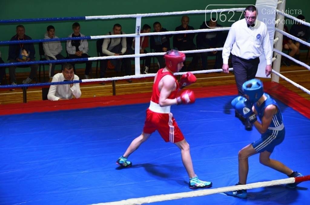 В Доброполье проходит Всеукраинский турнир по боксу, фото-1