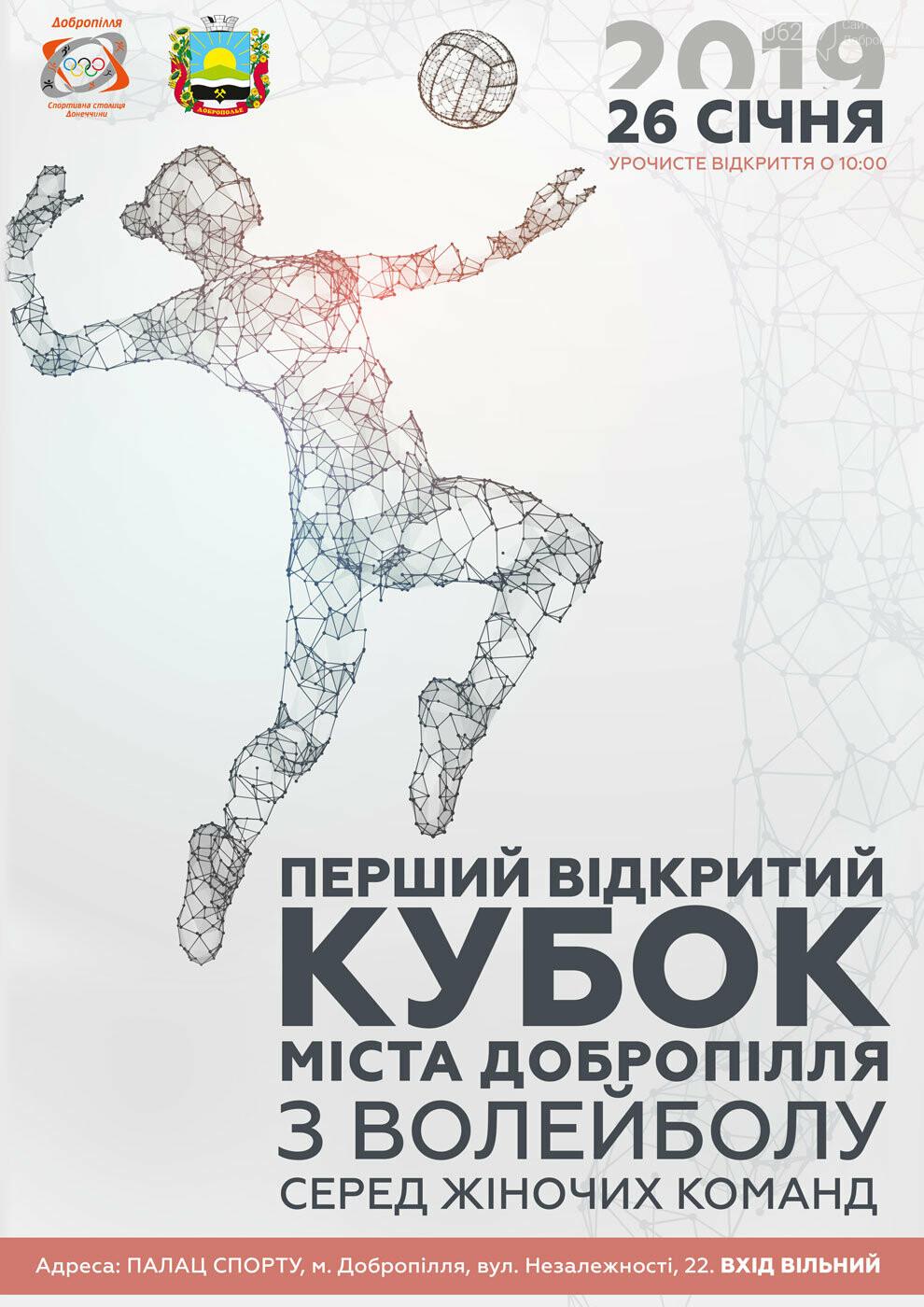 У Добропіллі відбудеться Перший відкритий Кубок міста з волейболу серед жіночих команд, фото-1