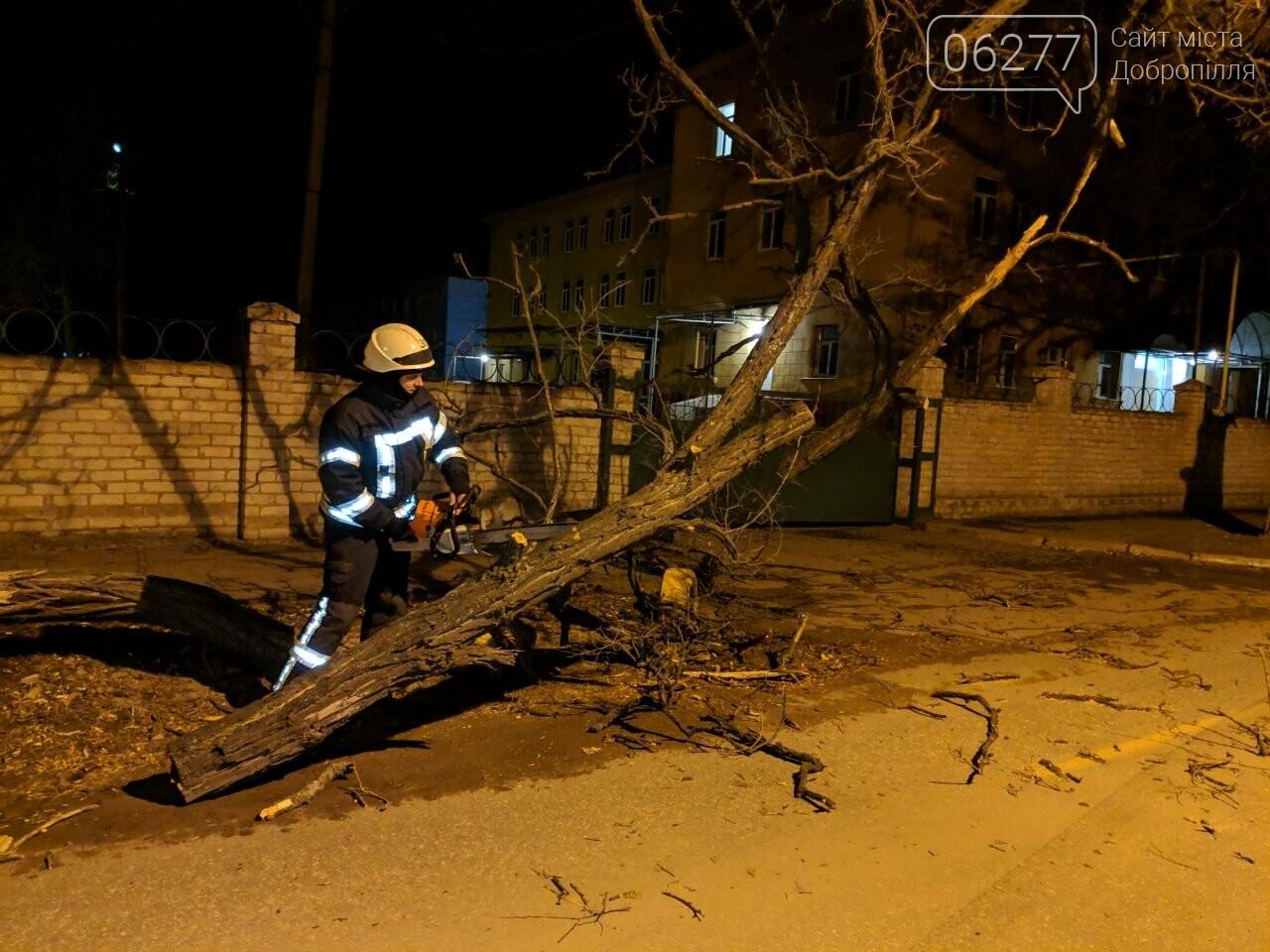 Наслідки штормовогу вітру: у Добропіллі впало дерево на проїжджу частину, фото-1