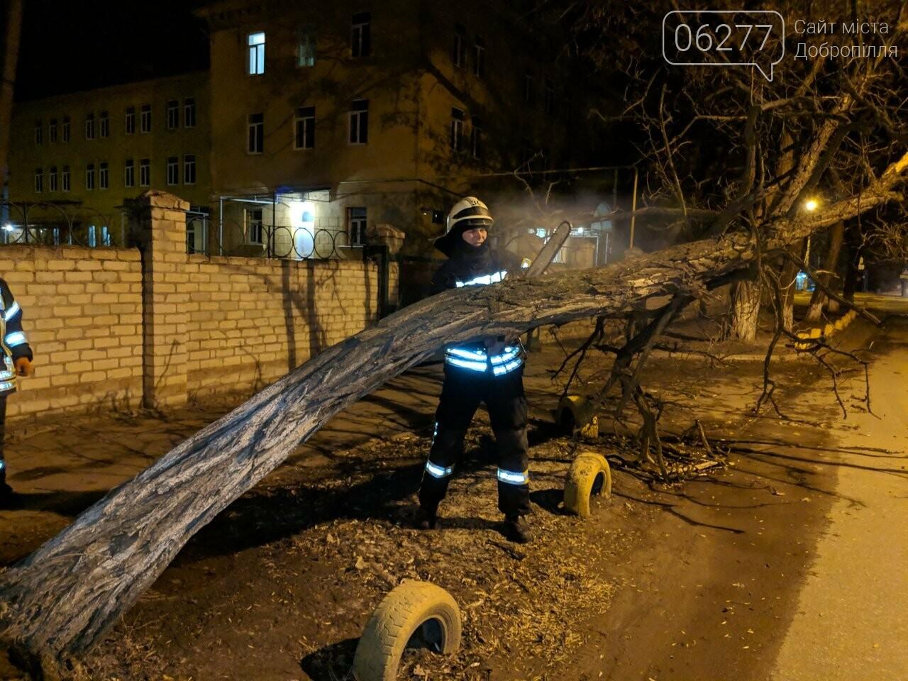 Наслідки штормовогу вітру: у Добропіллі впало дерево на проїжджу частину, фото-2