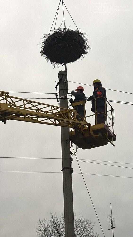 ДТЭК Донецкие электросети построили «новый дом» для белых аистов в Покровском районе, фото-2
