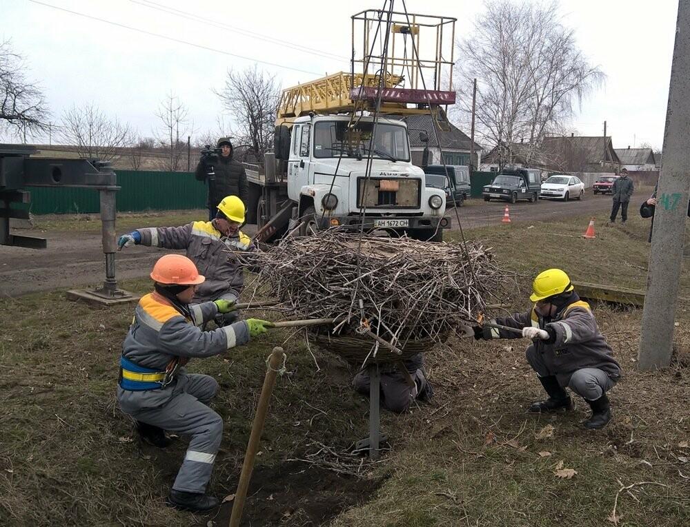 ДТЭК Донецкие электросети построили «новый дом» для белых аистов в Покровском районе, фото-1