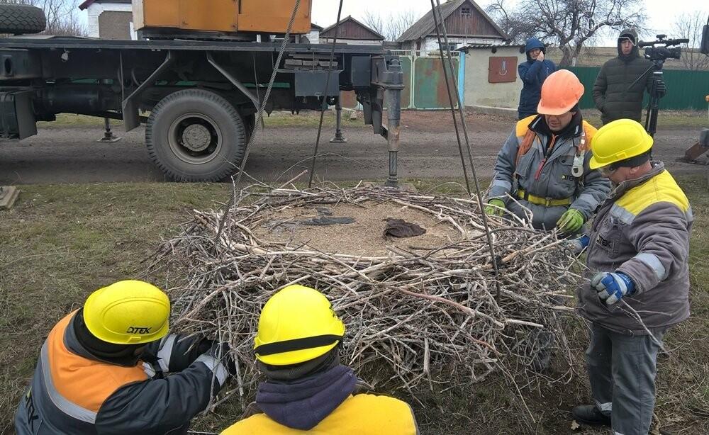 ДТЭК Донецкие электросети построили «новый дом» для белых аистов в Покровском районе, фото-3