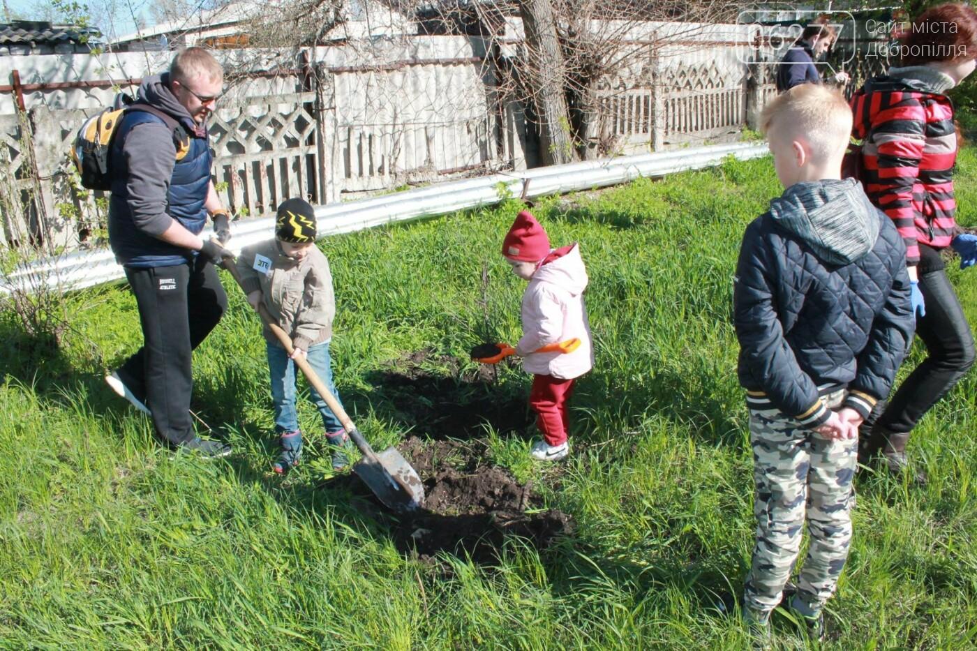 80 деревьев для Счастья: энергетики ДТЭК Луганской ТЭС озеленили город, фото-1