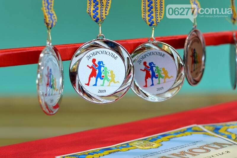 В Добропіллі пройшли змагання «Мама, тато, я – спортивна сім'я», фото-1