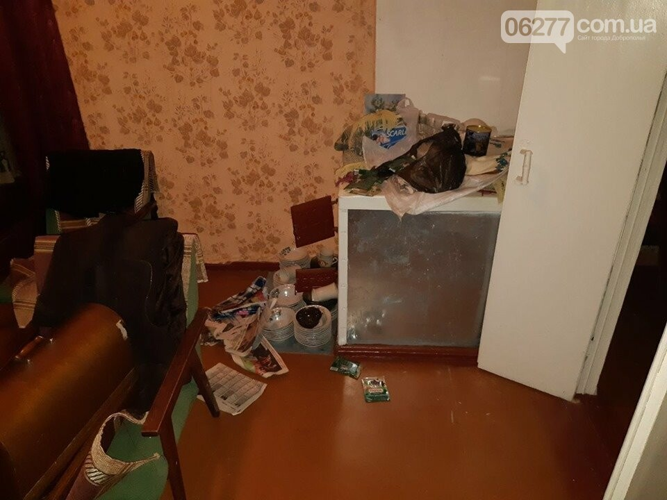 Добропільські поліцейські спільно з оперативниками обласного главку розкрили розбійний напад на місцеву пенсіонерку, фото-2
