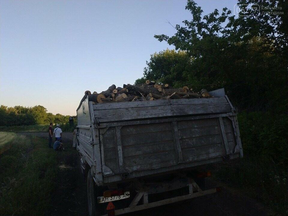 За фактом вирубки лісу у с.Вільне Добропільського району відкрито кримінальне провадження, фото-6