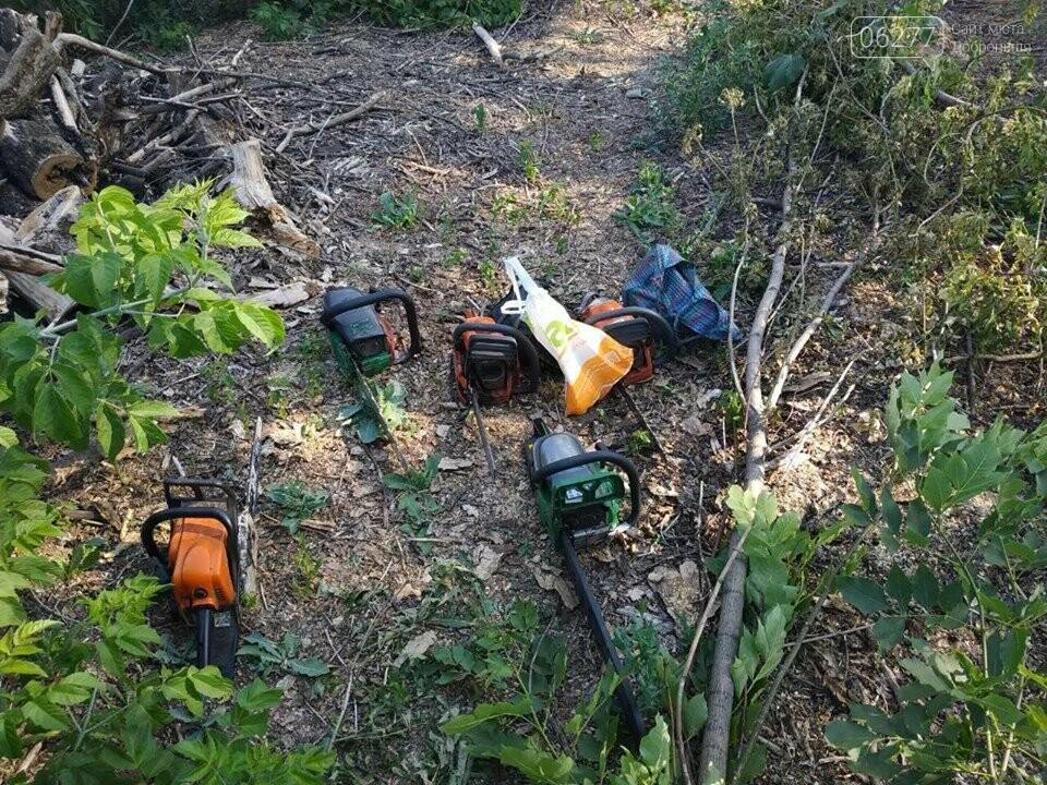 За фактом вирубки лісу у с.Вільне Добропільського району відкрито кримінальне провадження, фото-2