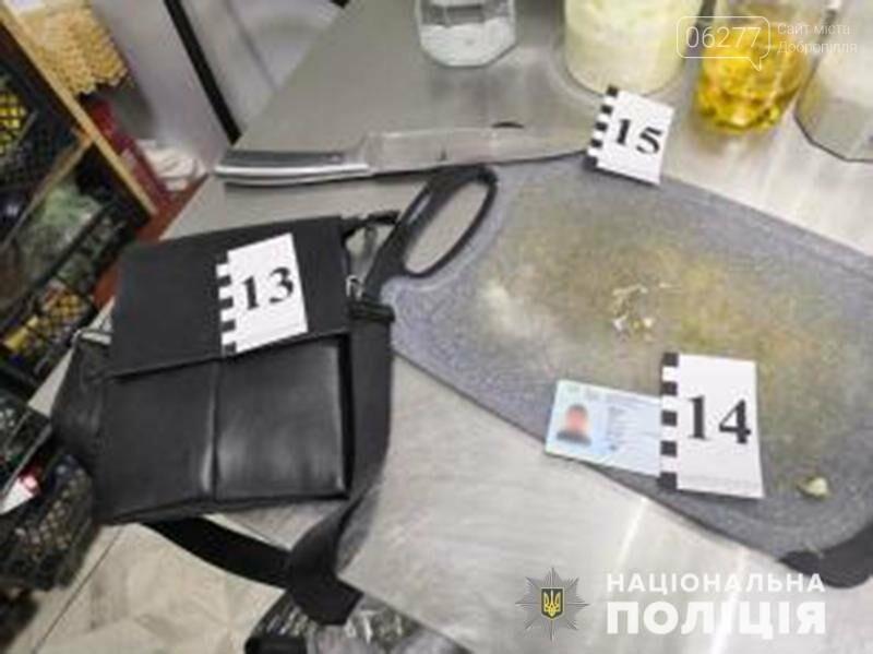 Поліція Добропілля притягує до відповідальності зловмисника, який вбив свого батька, фото-1
