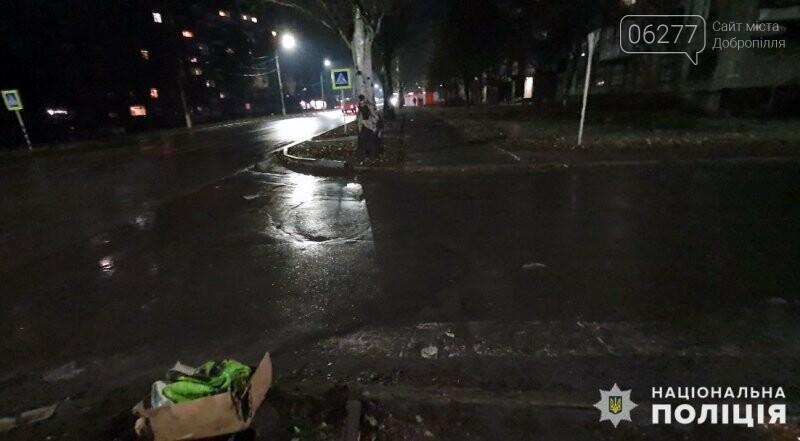 Поліція Добропілля встановлює обставини ДТП, у якій постраждав пішохід, фото-1