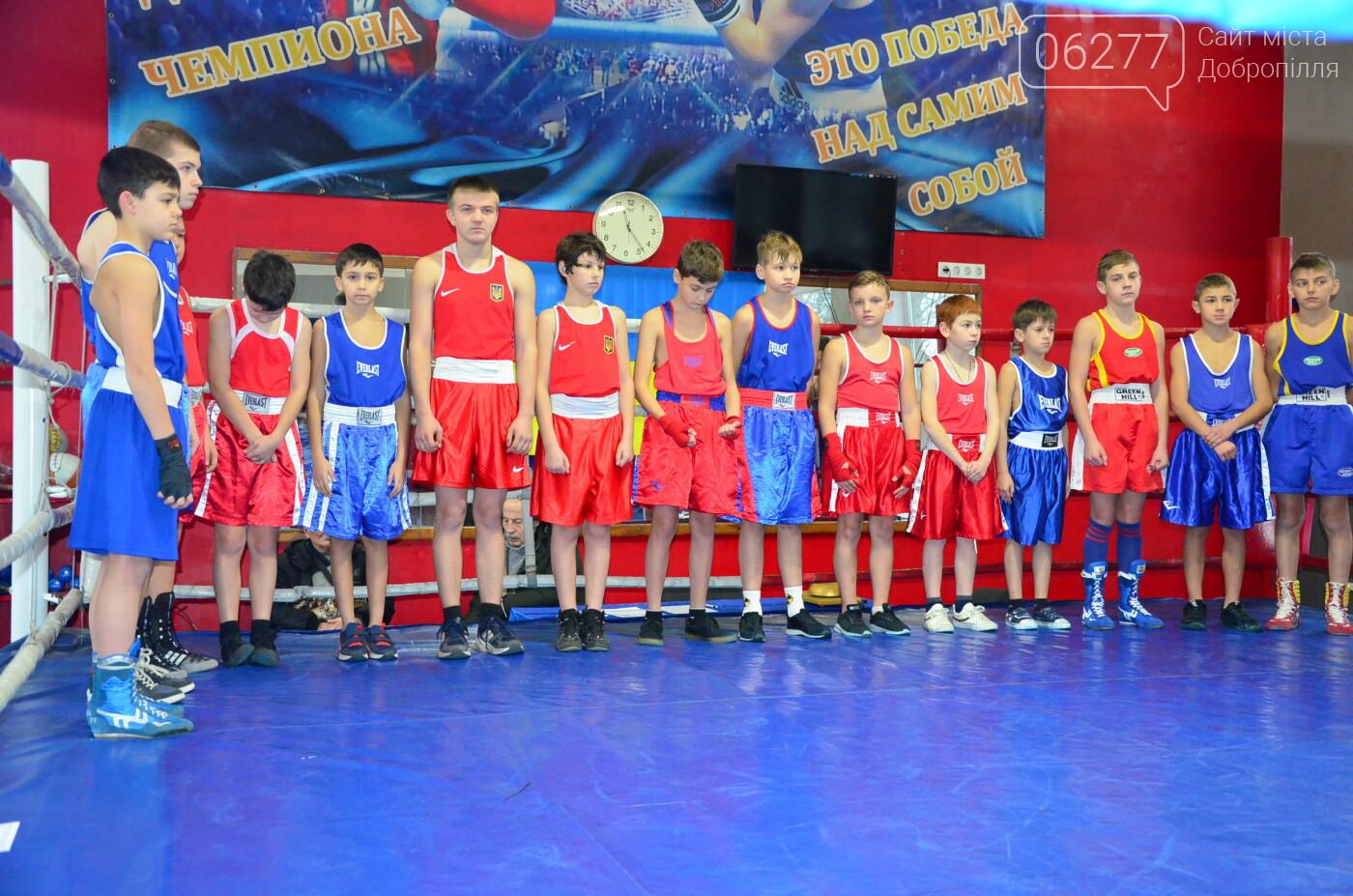 Особиста першість ДЮСШ з боксу серед боксерів Великого Добропілля  , фото-2