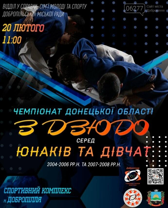 В Доброполье пройдет Чемпионат Донецкой области по дзюдо, фото-1