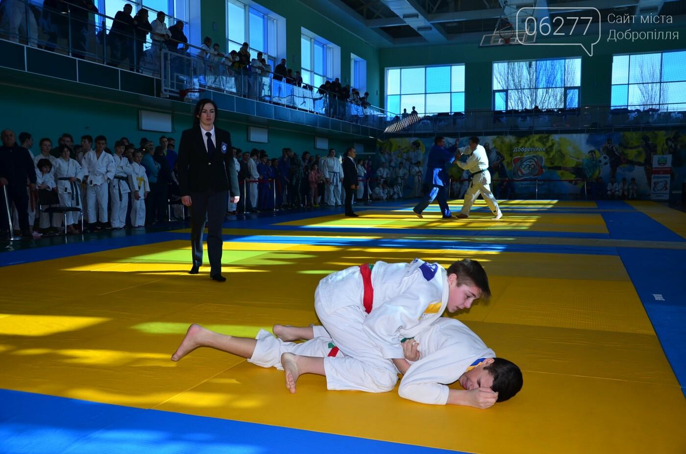 У Добропіллі відбувся Чемпіонат Донецької області з дзюдо, фото-3