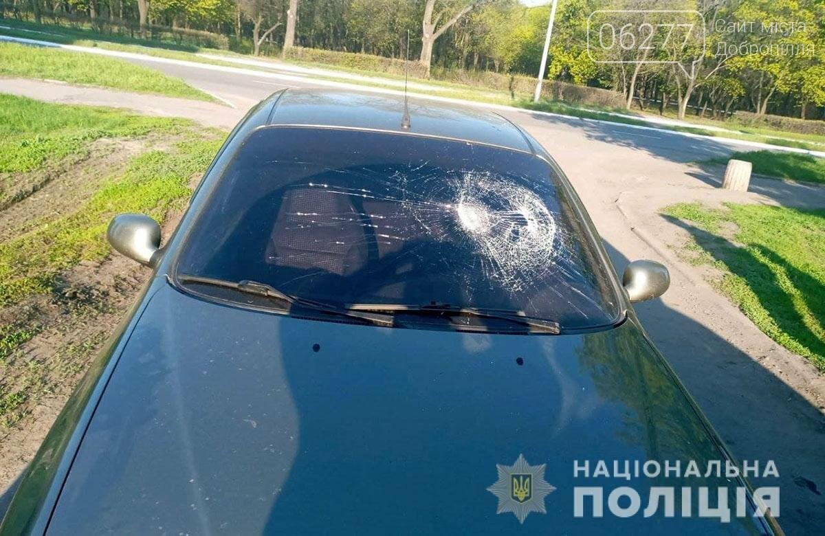 У Добропіллі п'яний водій наїхав на поліцейського, фото-1